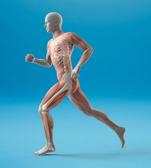Succesvolle evaluatie zorgpad 'Beter bewegen bij artrose'. Dat smaakt naar meer!